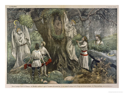 in-a-forest-near-chartres-france-druids-collect-mistletoe-for-ritual-purposes-posters